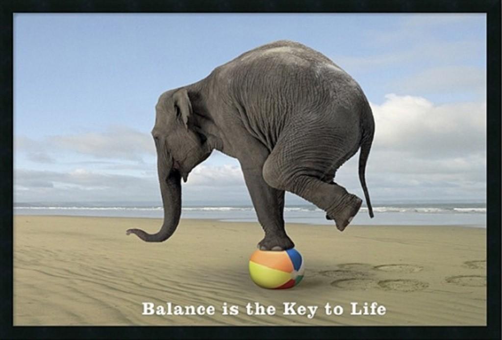 Mentale en fysieke balans zorgt voor succes in je leven