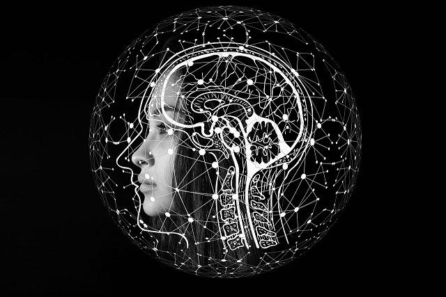 Verschillende vormen van intelligentie