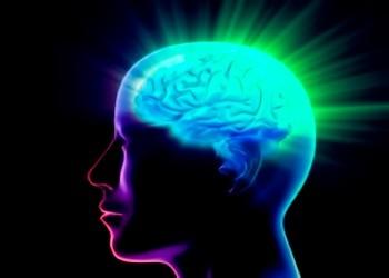 Kracht van ons brein