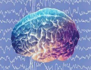 Hirnwellen, die elektrische Aktivität unseres Gehirns