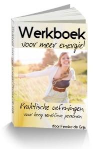 Werkboek voor meer energy oefeningen voor hsp Leuke en goede ADD, ADHD en HSP zelfhulpboeken
