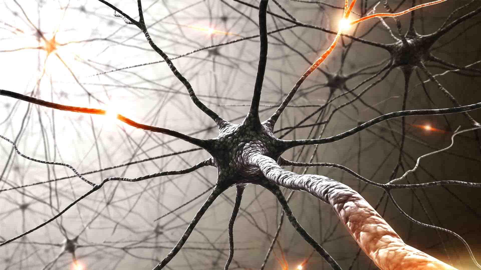 Was ist Neurofeedback und wie kann es bei ADS / ADHS helfen?