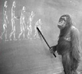 ADHD evolutie