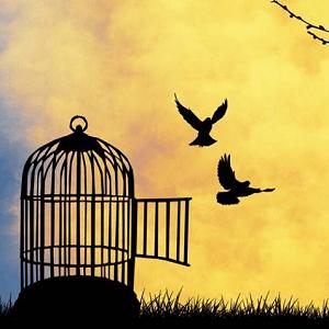 Leven of geleefd worden… Wat doe jij?
